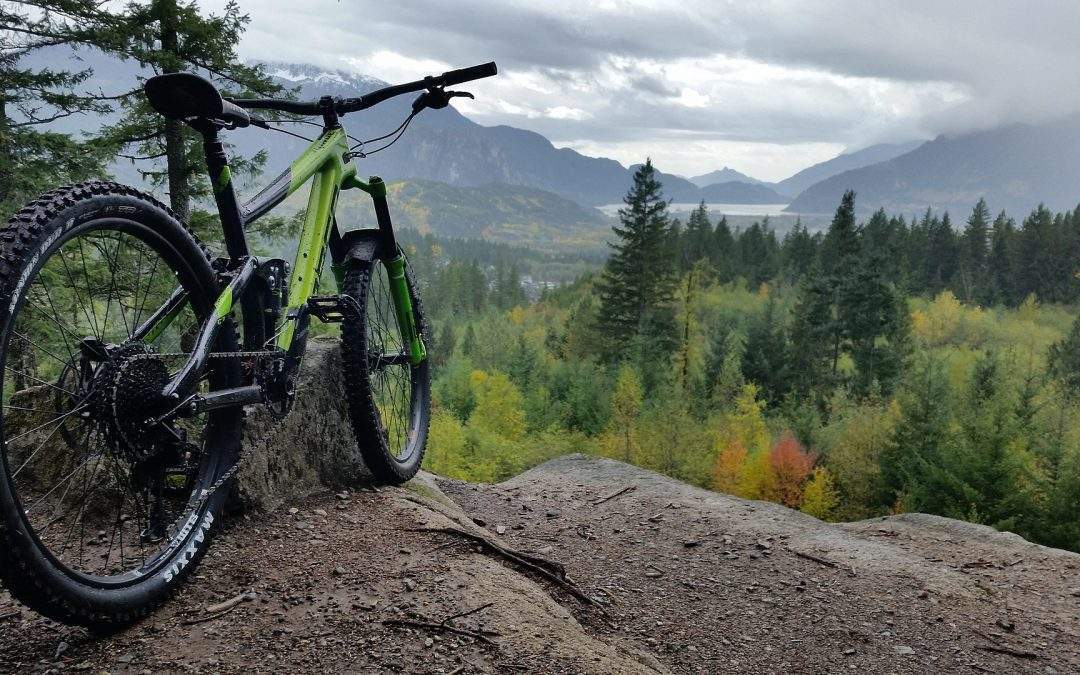 Top 10 Best Mountain Bikes